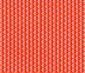 2116 orange
